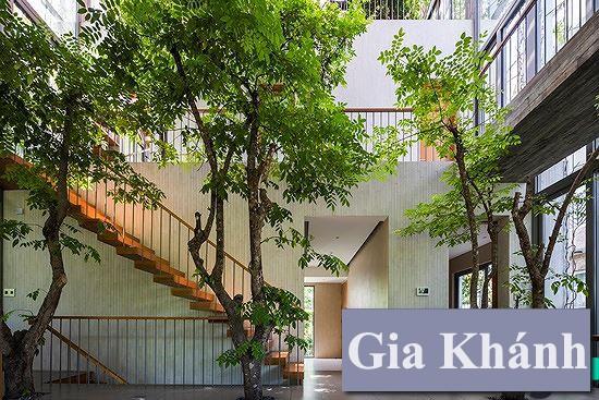 Không gian xanh đẹp đem cả thiên nhiên vào nhà