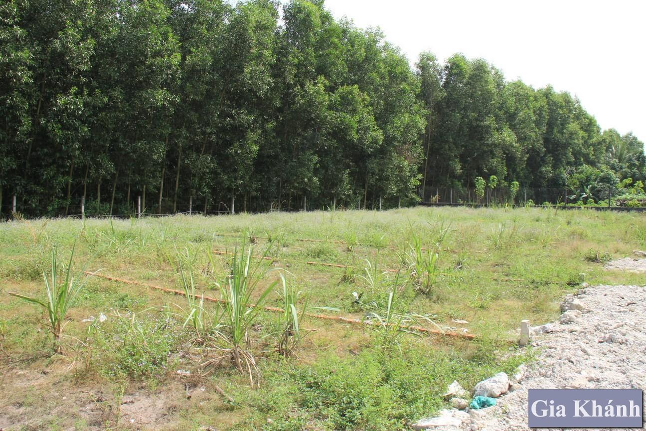Các Kinh nghiệm đầu tư khi mua đất nền Nhơn Trạch